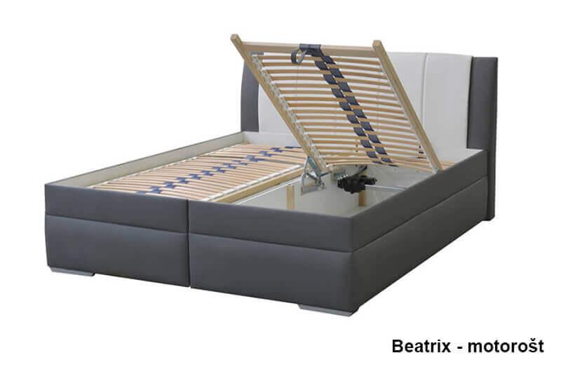 beatrix motorst